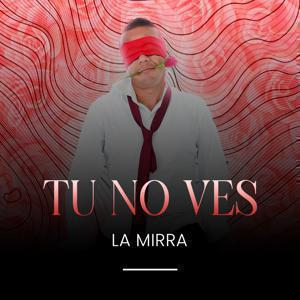Cover image for song - Tu no Ves